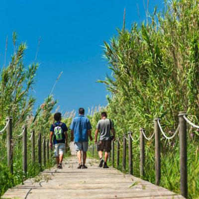 Espacio Natural del Delta del Llobregat, cerca de Castelldefels.